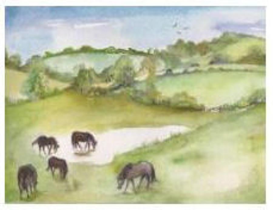 SM:  Countryside