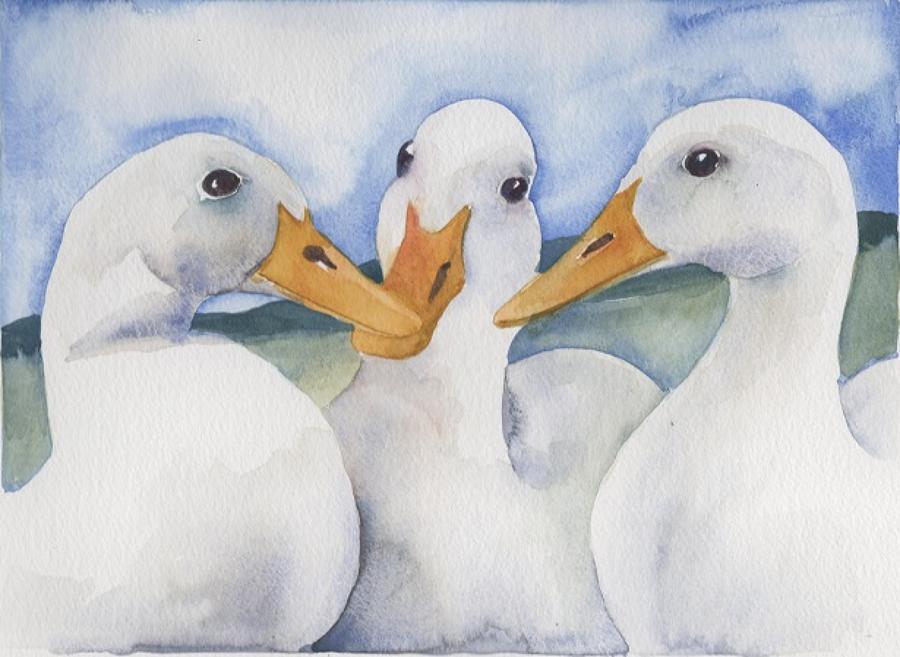 MD:  Hens, Ducks & Birds