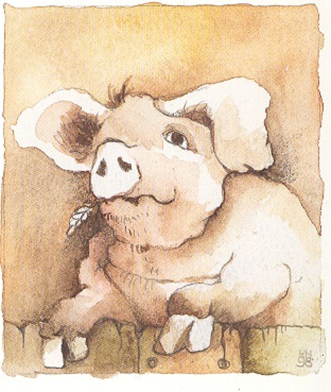 Old Boar