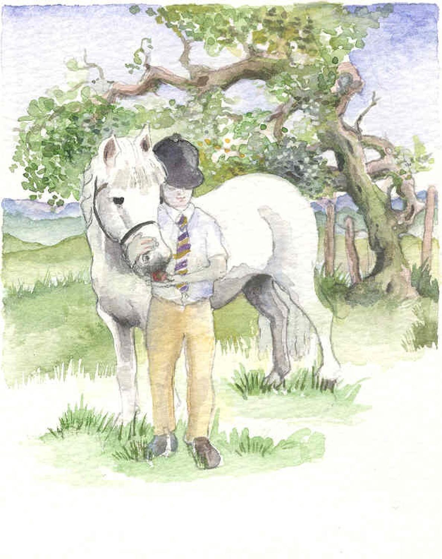 Little Grey Pony