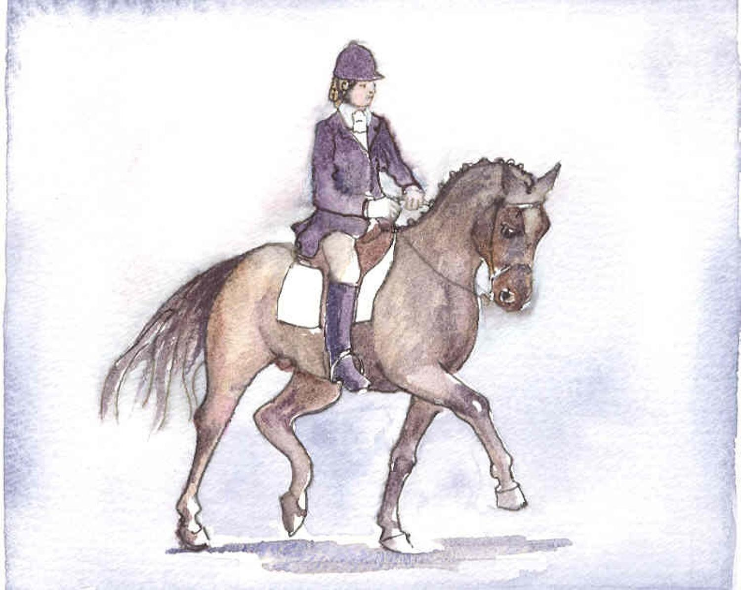 Dressage warm up