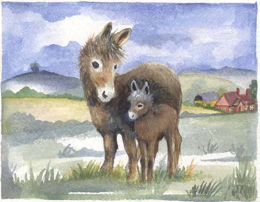 Donkey & Foal