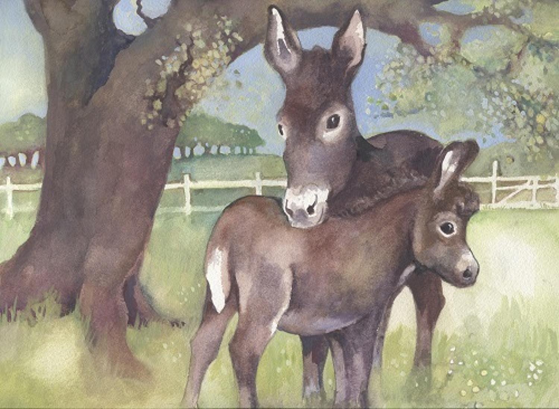 Donkey & Foal (2)