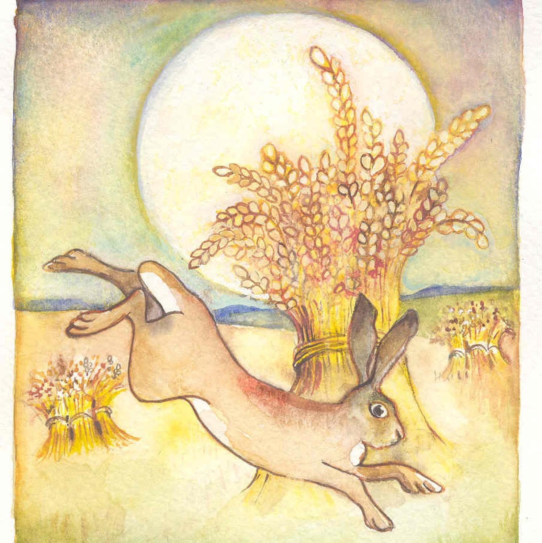 Hare, sun & stooks