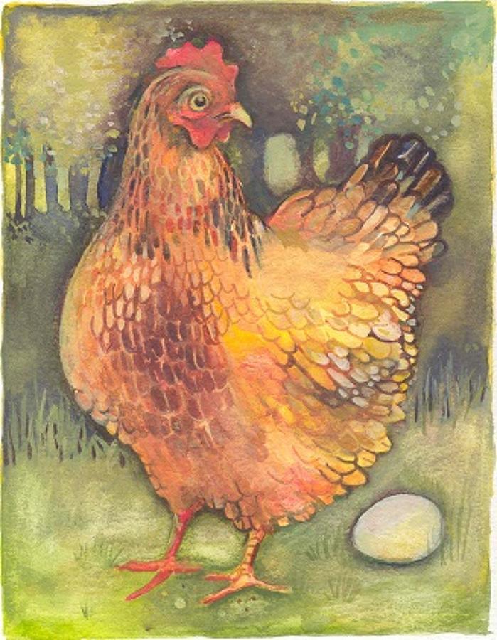 Free-range chicken & egg