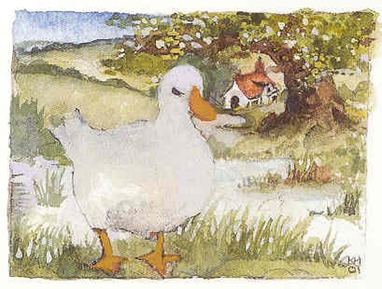 Duck & oak tree