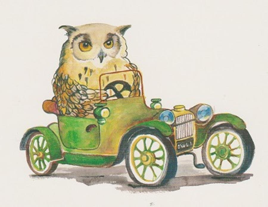 Driving owl