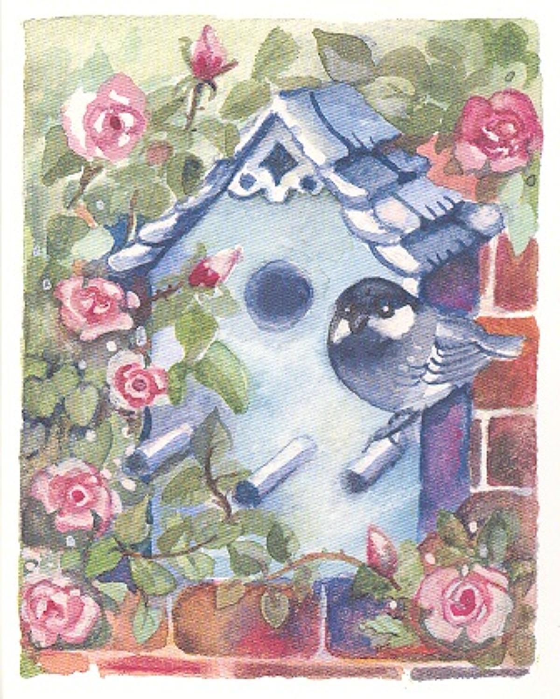Roses & birdbox