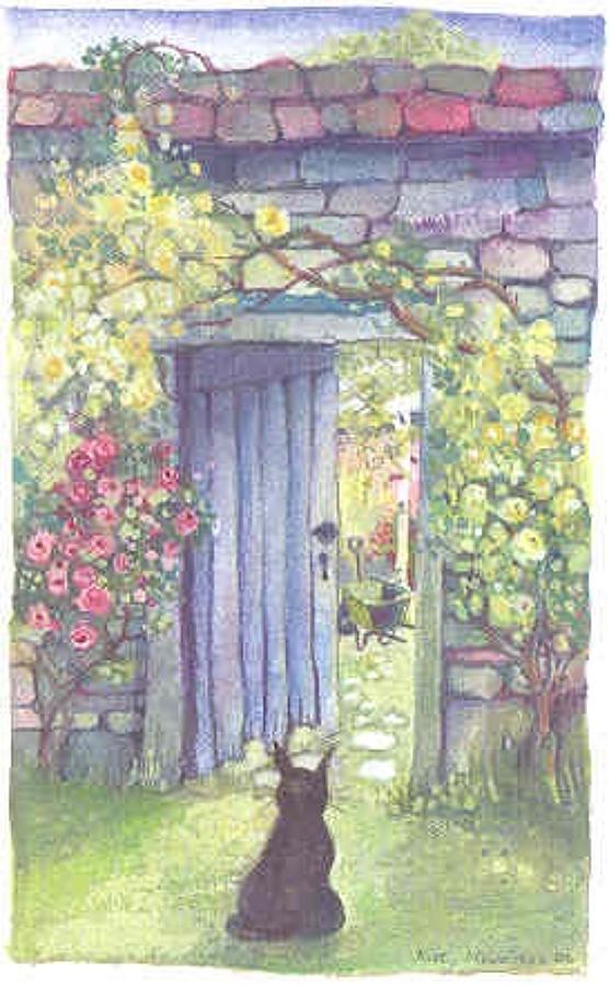 Cat & walled garden