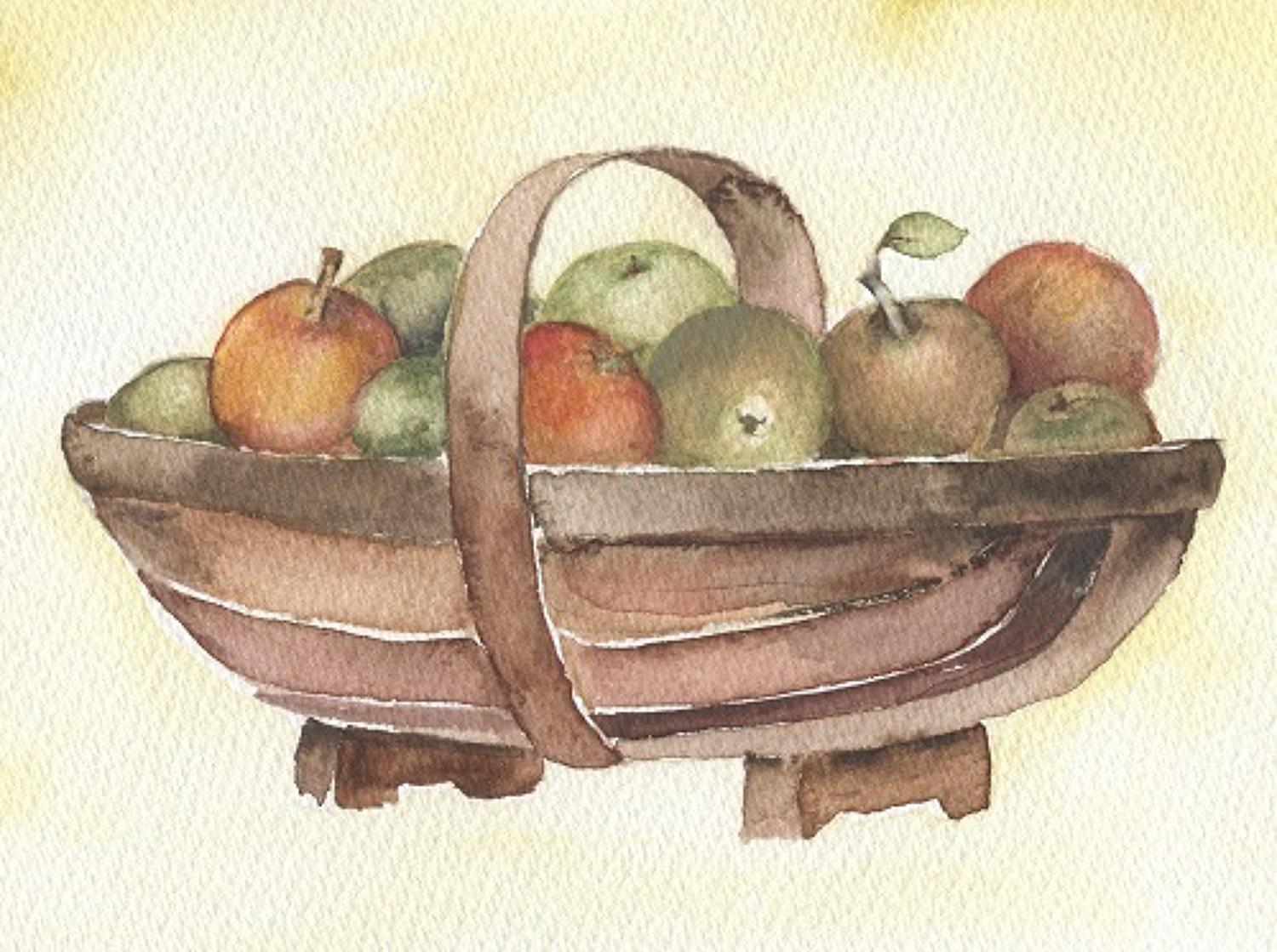 Trug of apples