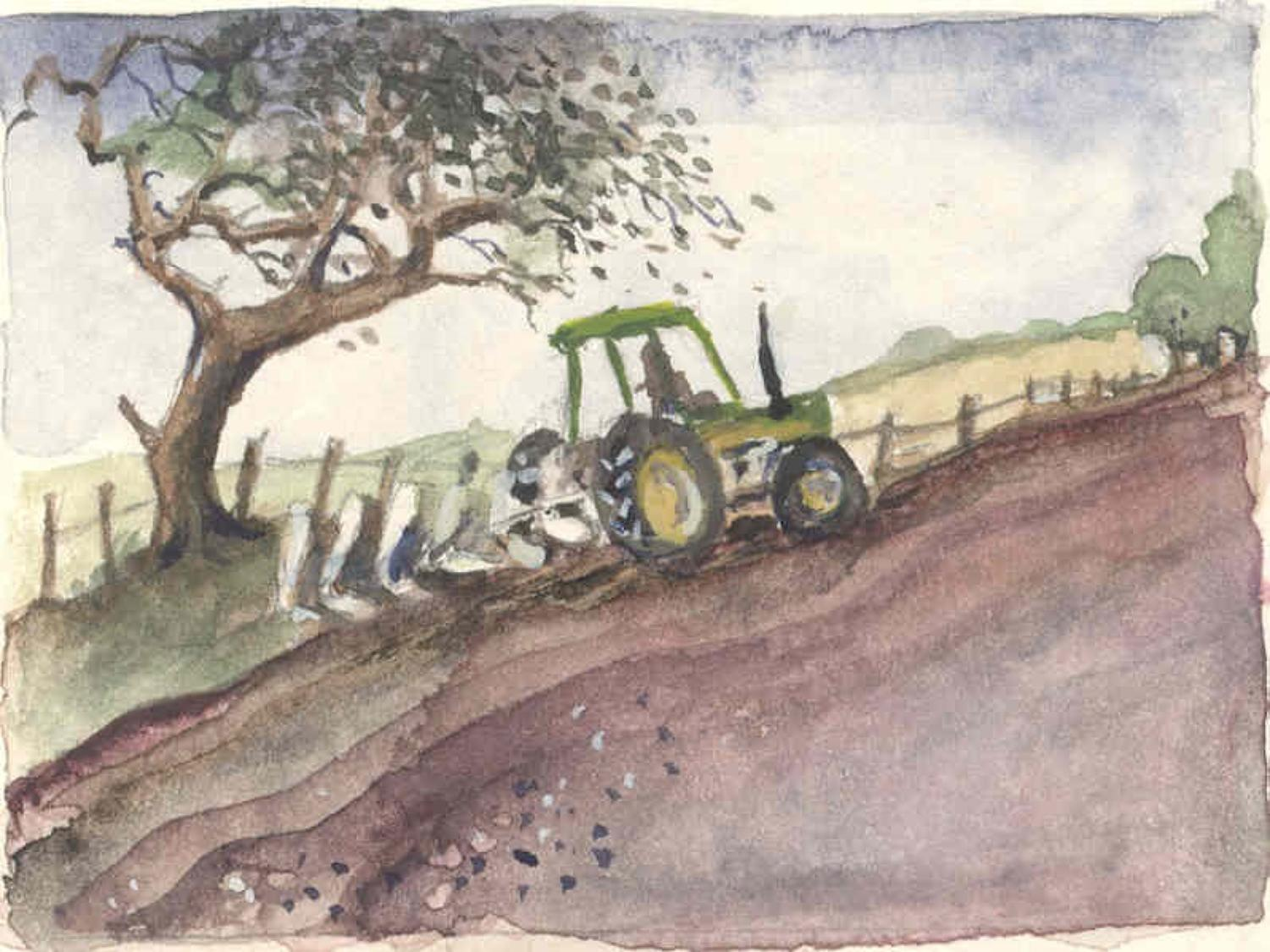 Autumn ploughing