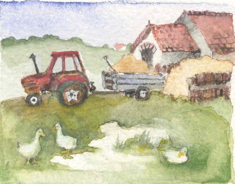 Tractor & duckpond