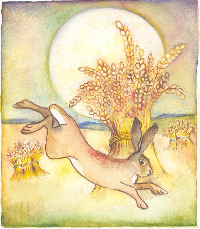 Hare & sun