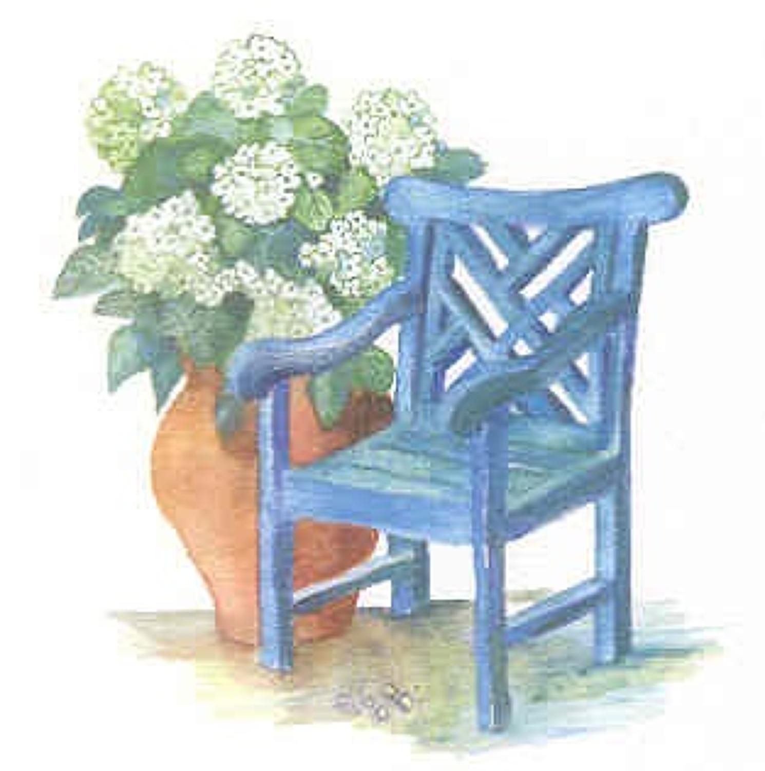 Blue chair, white hydrangea