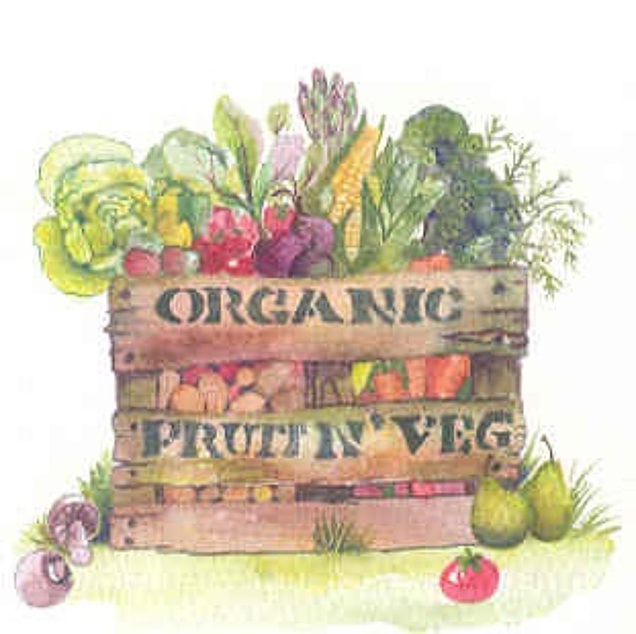 Organic fruit n' veg