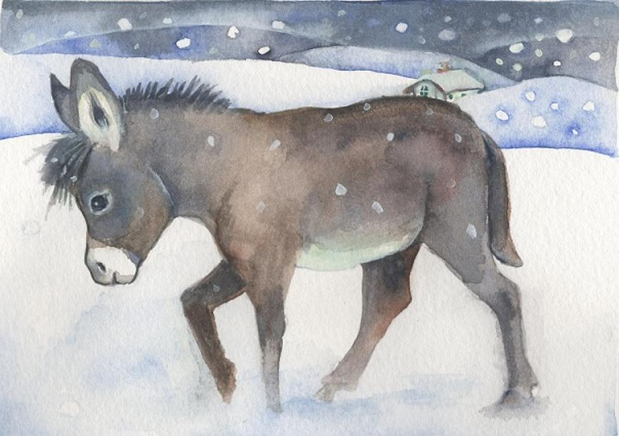 Little donkey in the snow