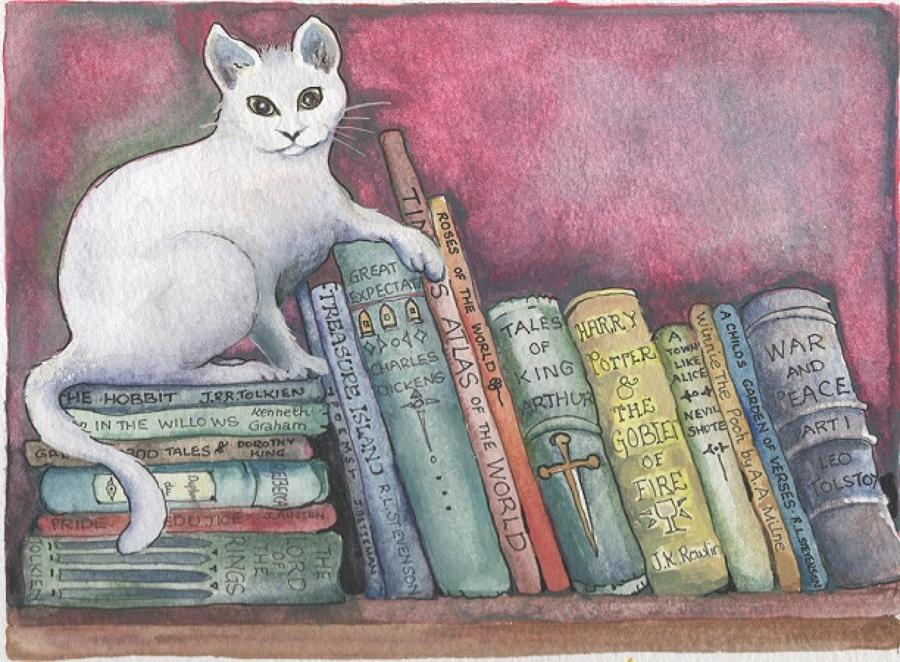Cat on the bookshelf
