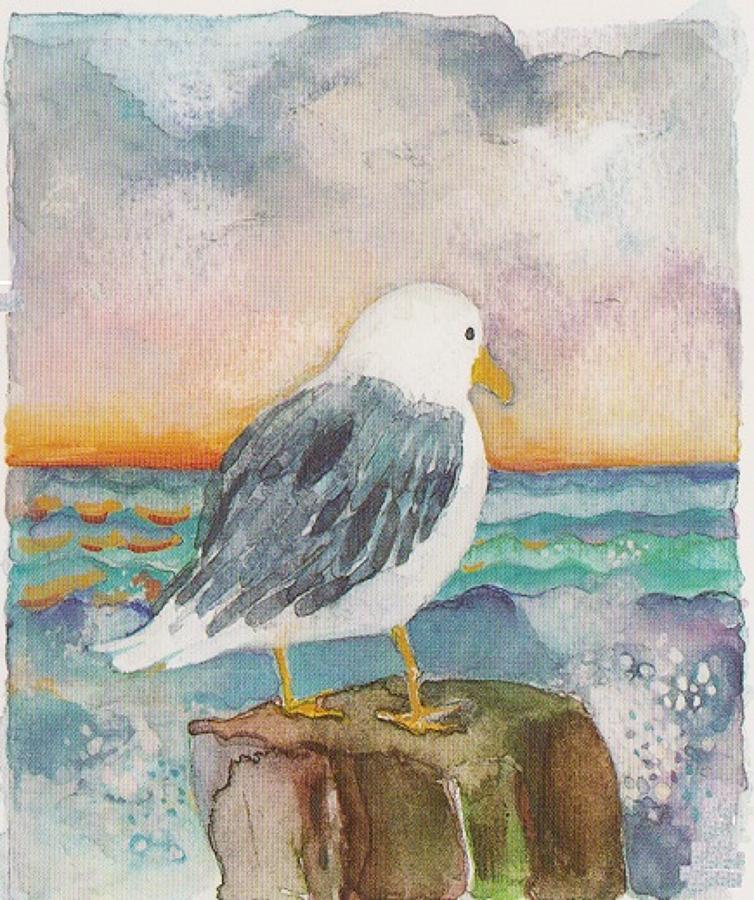 The lonely seagull