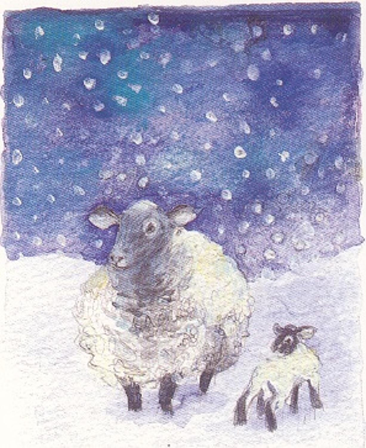 Ewe & lamb in the snow