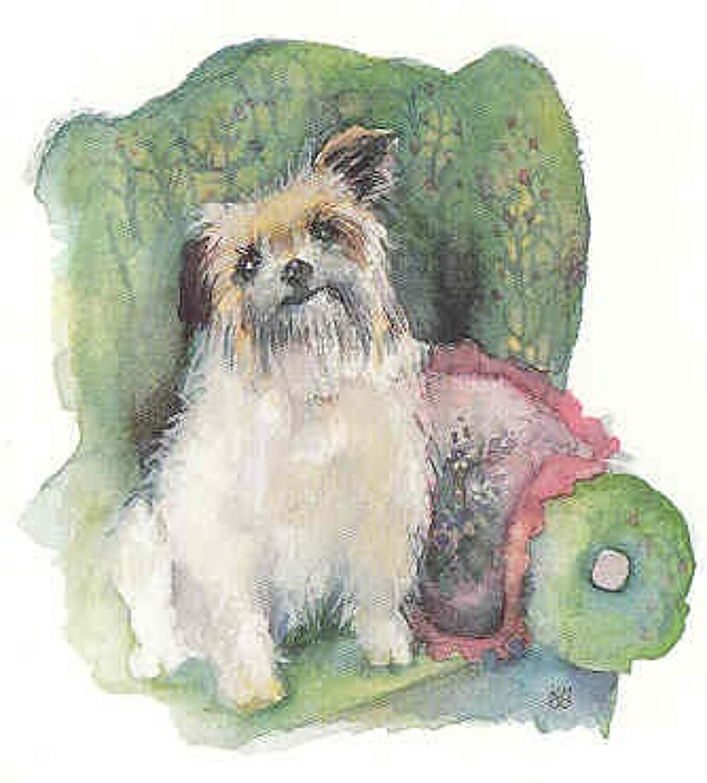 Terrier in armchair