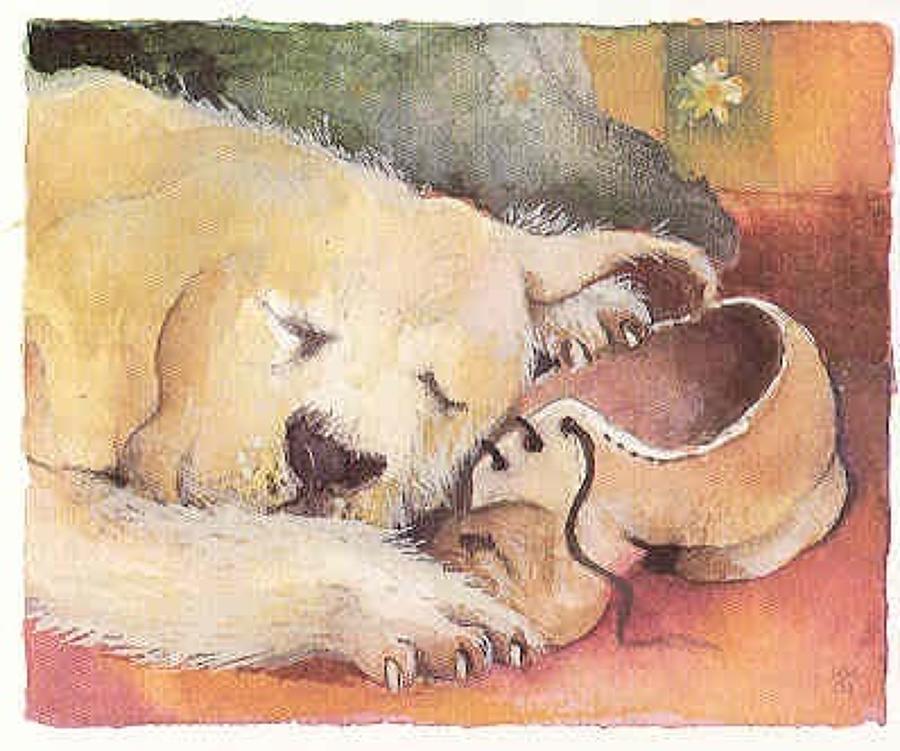 His master's  shoe