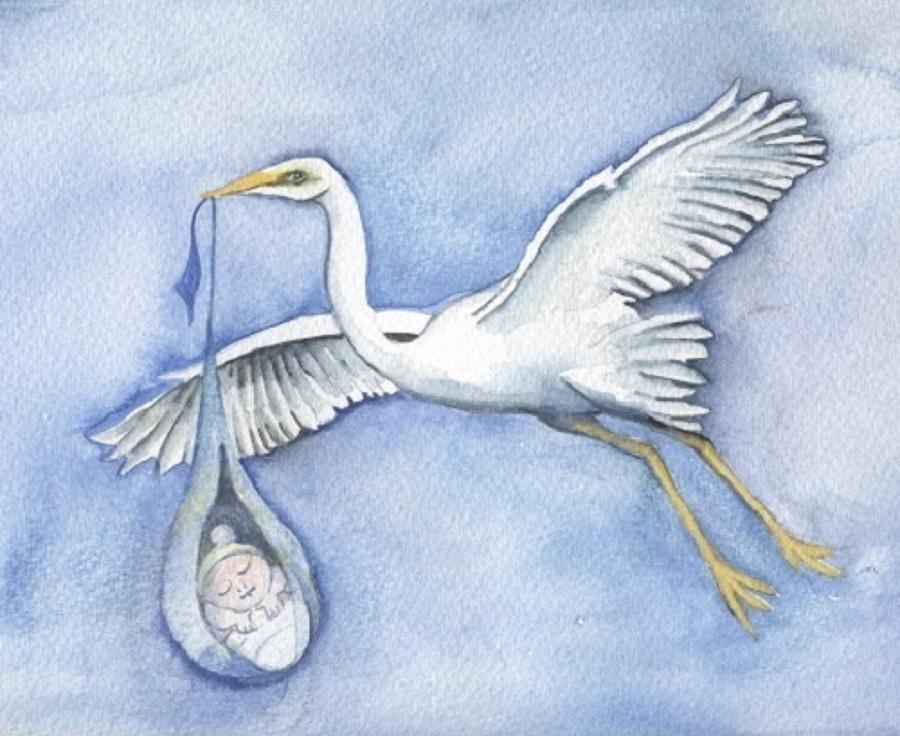 Stork & baby boy