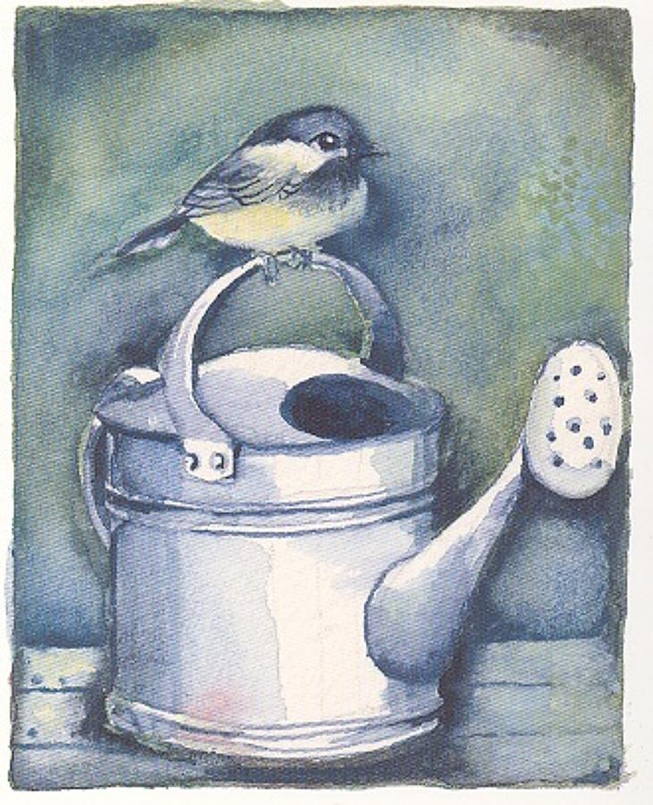 Bird & watering can