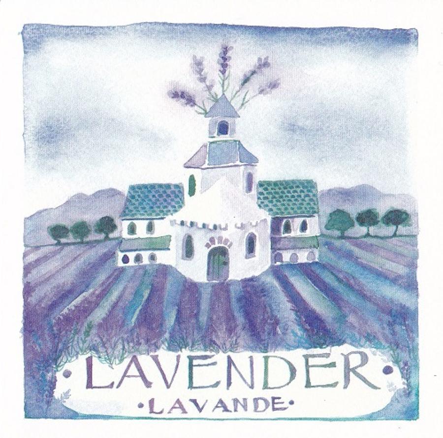Lavender, lavande