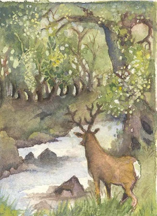 Stag in wood