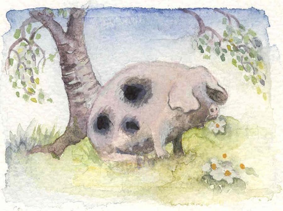 Daisy-eating pig