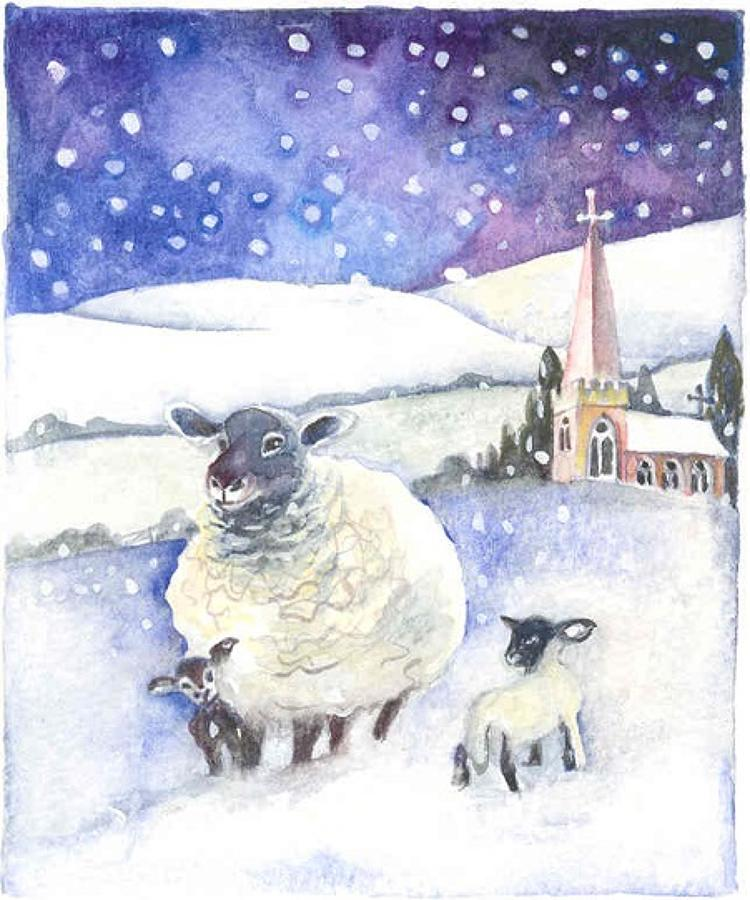 Ewe & lambs in the snow