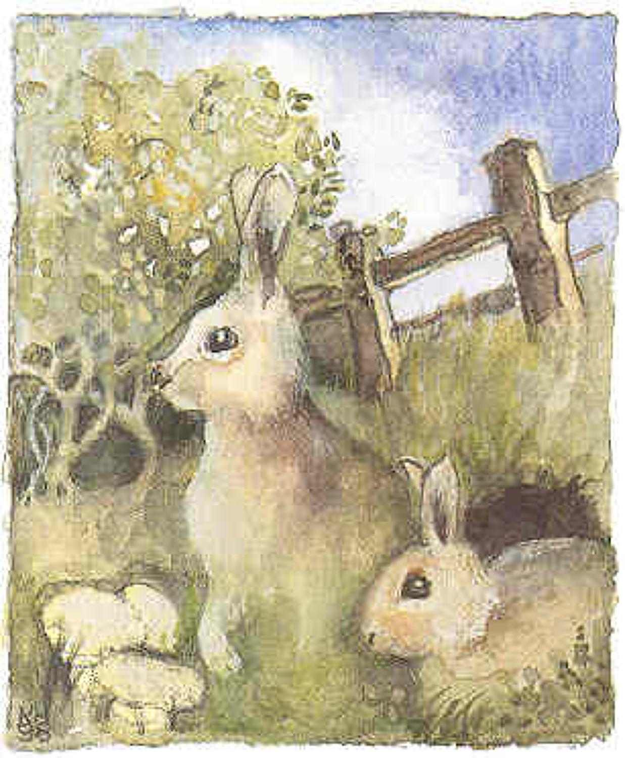 Two rabbits by their burrow