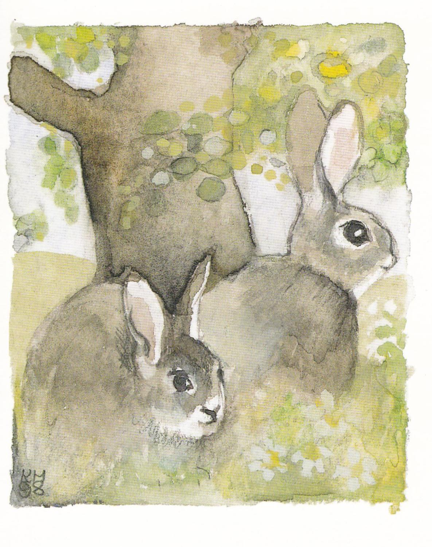 Springtime rabbits