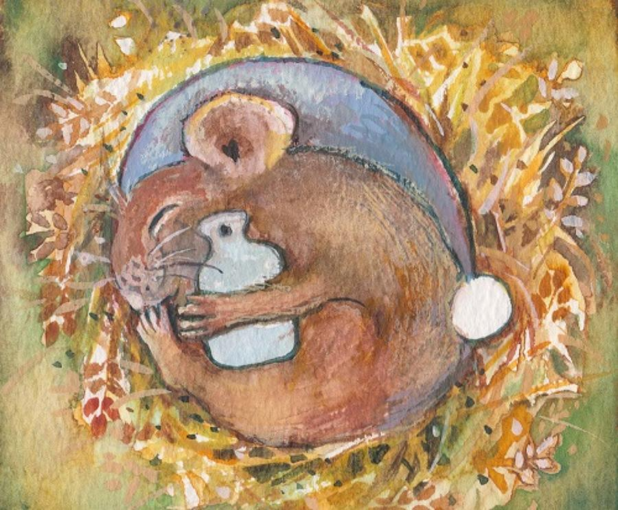 Dormouse & hot water bottle