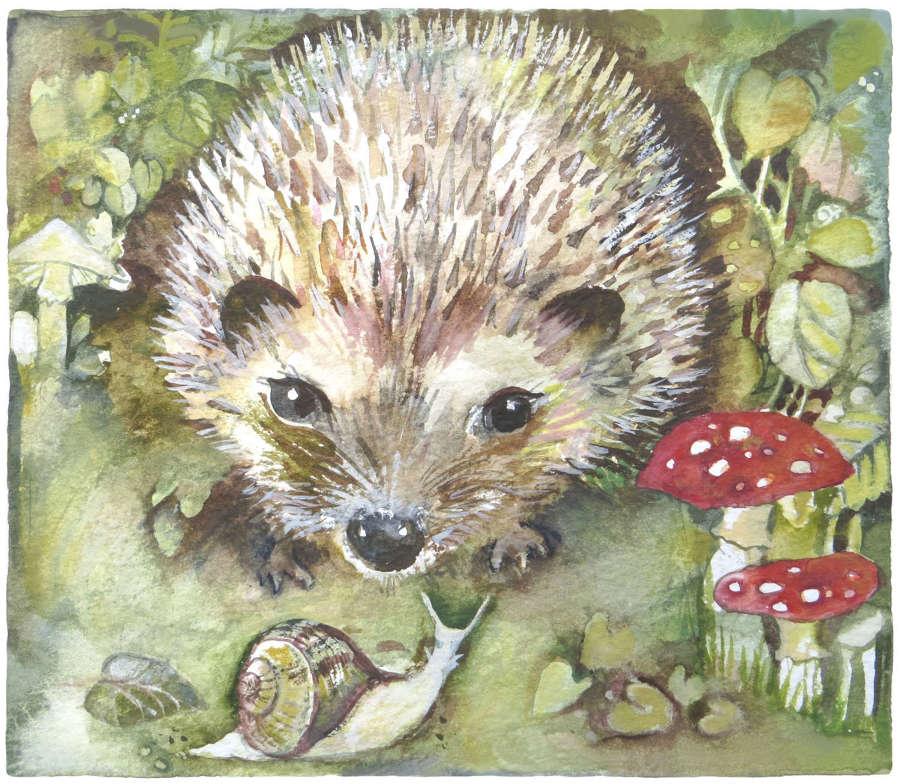 Hedgehog & toadstools