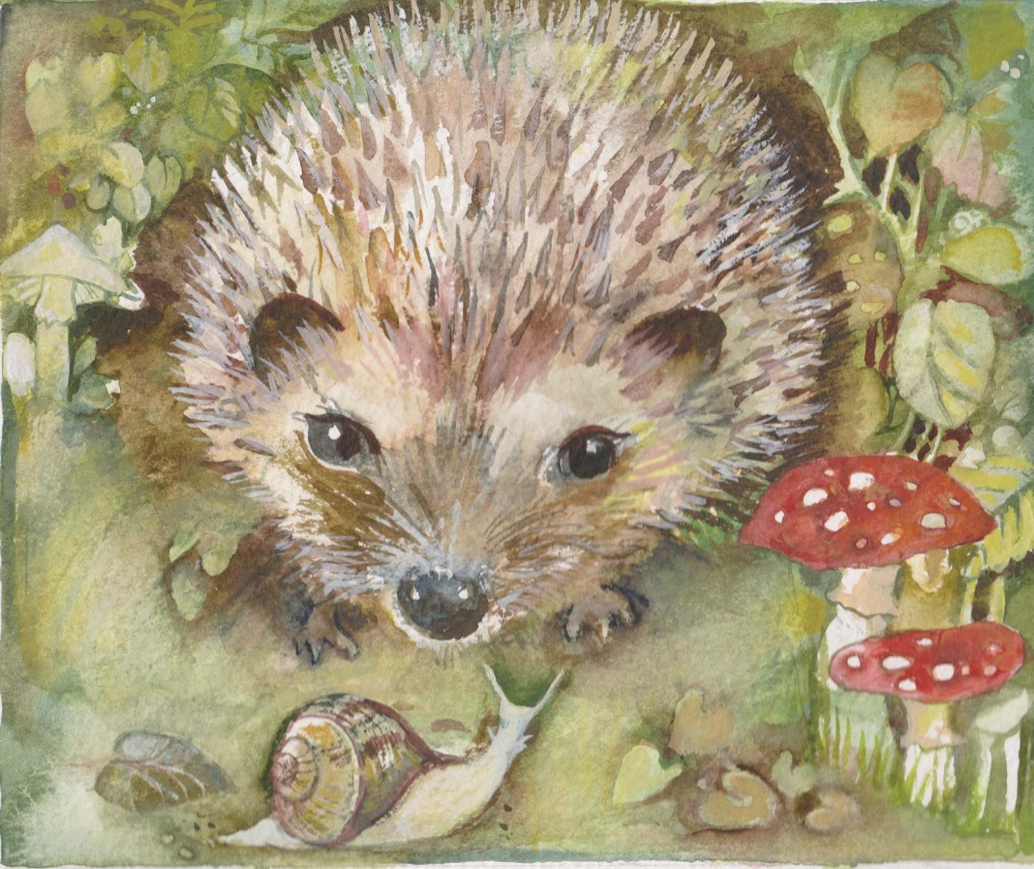 Hedgehog & toadstools