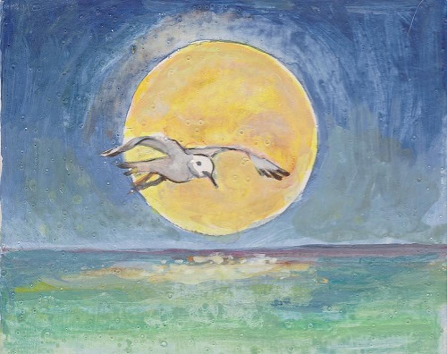 Seagull & moon