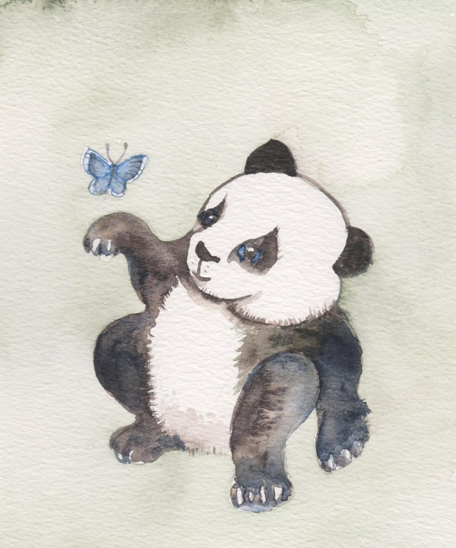 Panda & butterfly